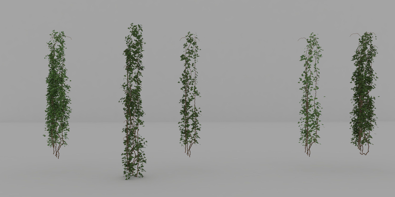 Ivy Rhino Model CGTrader