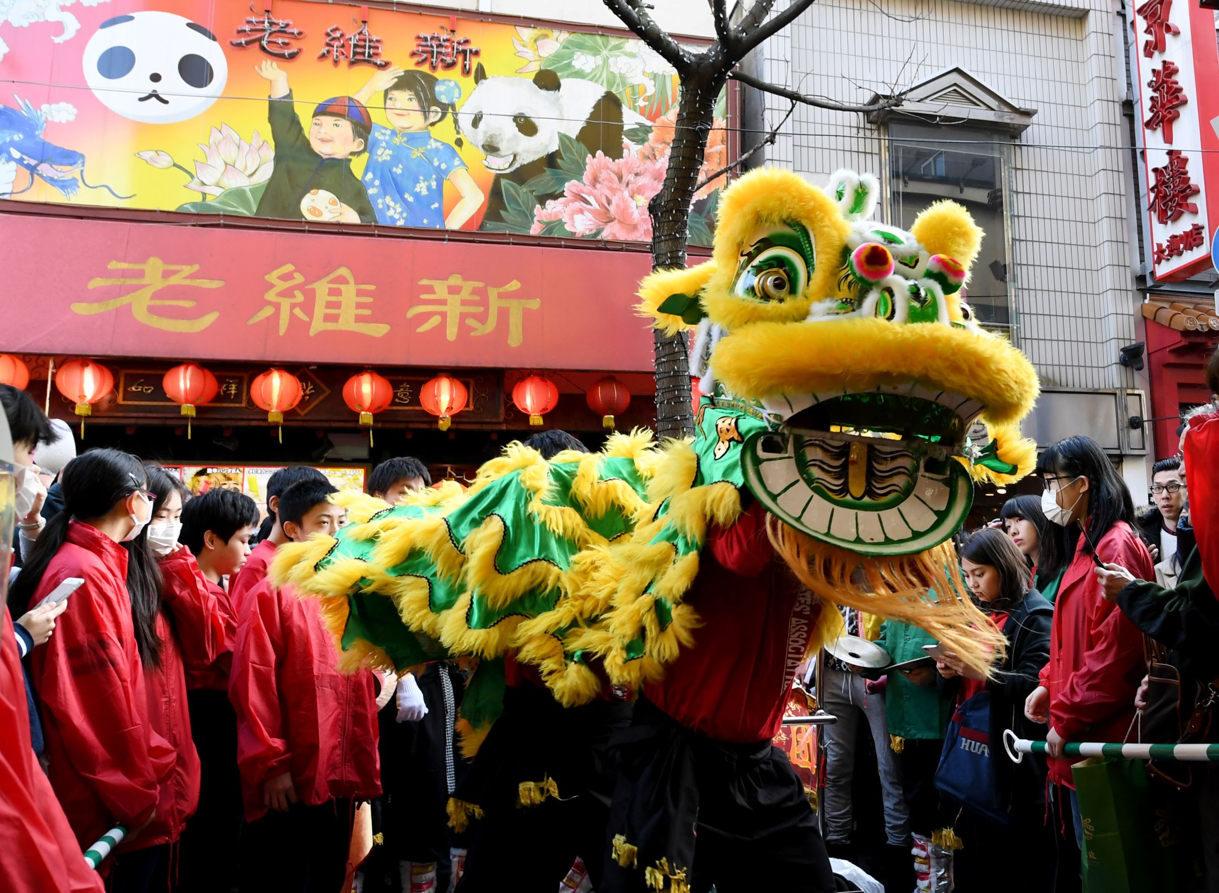 A Chinese lion dance troupe performs in front of a shop at Chinatown to celebrate the start of the Lunar New Year in Yokohama on January 28, 2017. / AFP / TOSHIFUMI KITAMURA        (Photo credit should read TOSHIFUMI KITAMURA/AFP/Getty Images)
