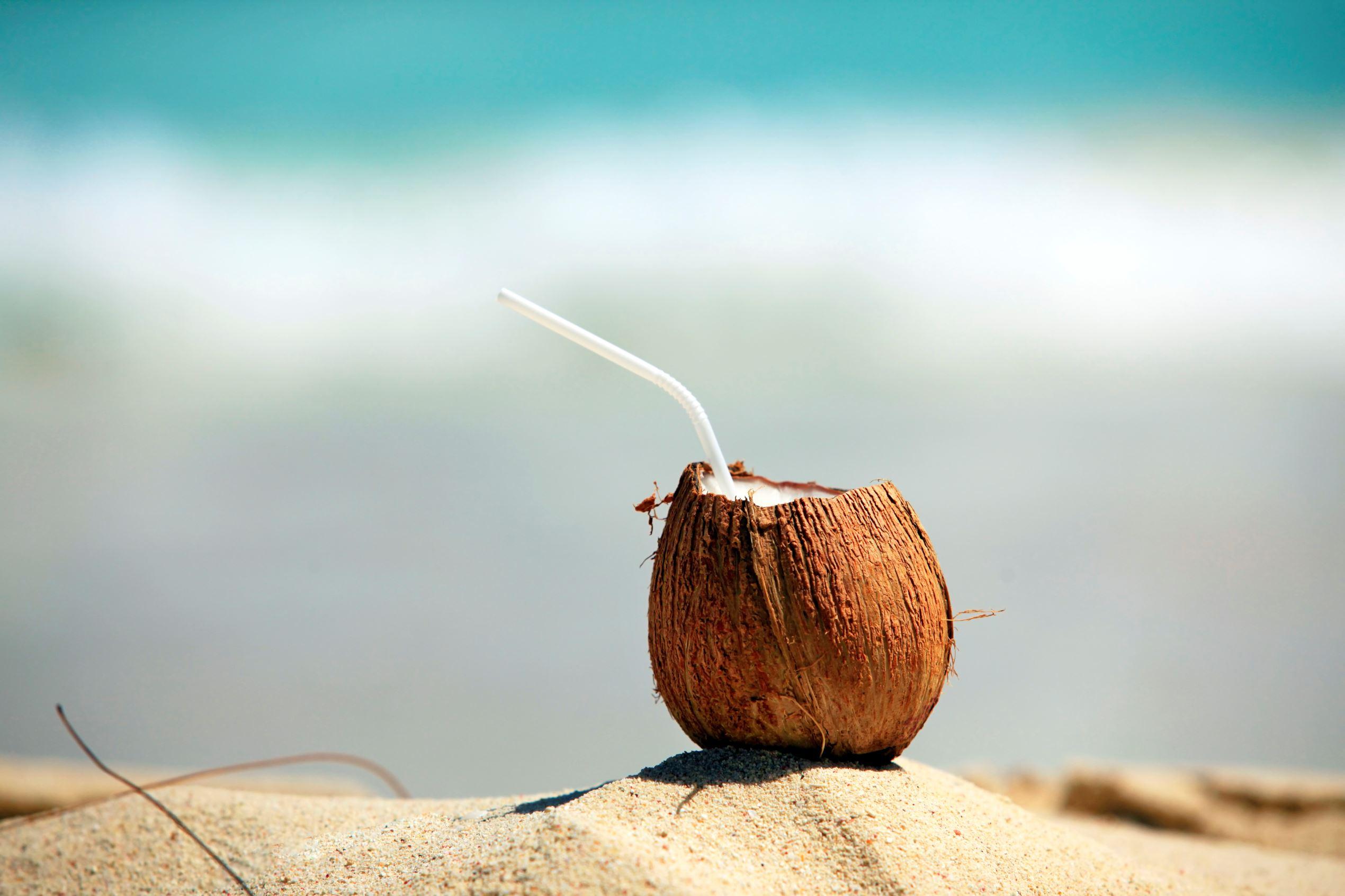 Slide 7 of 25: Coconut