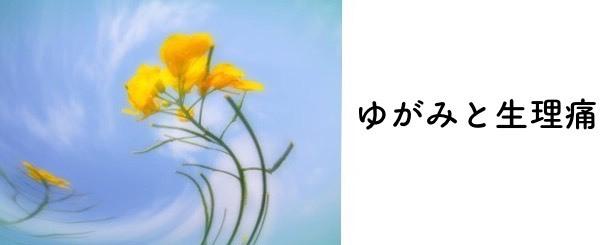 img_20170412-232926.jpg