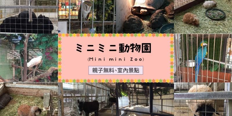 【沖繩雨天備案】mini mini zoo (ミニミニ動物園),免費的室內動物園