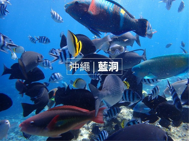 沖繩藍洞,潛水浮潛推薦 青之洞窟屋,中文教練,新手也能放心遨遊海底