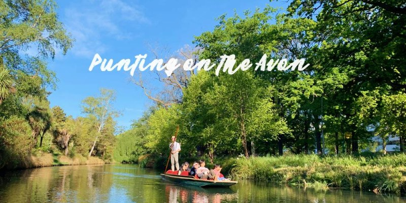【基督城必玩行程】雅芳河撐蒿船,讓我們換個角度欣賞基督城的美吧!Punting on the Avon River