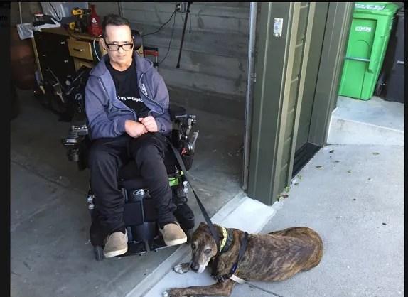 Le chien de Bruce Francis, un californien qui souffre de la sclérose en plaques, s'appelle Dash.