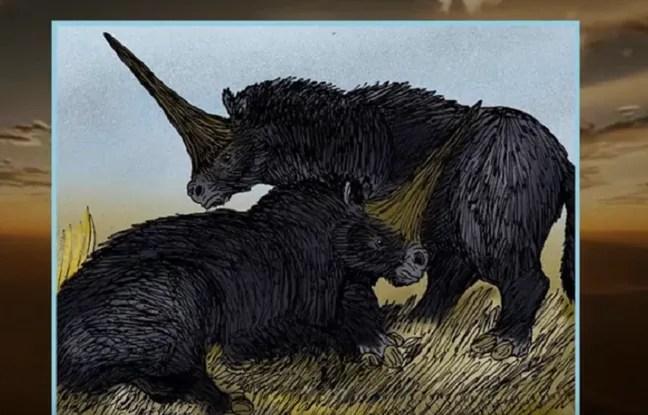 Les scientifiques se sont appuyés sur les fragments de crâne de l'animal retrouvés au nord-est du Kazakhstan.
