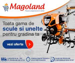 magoland.ro
