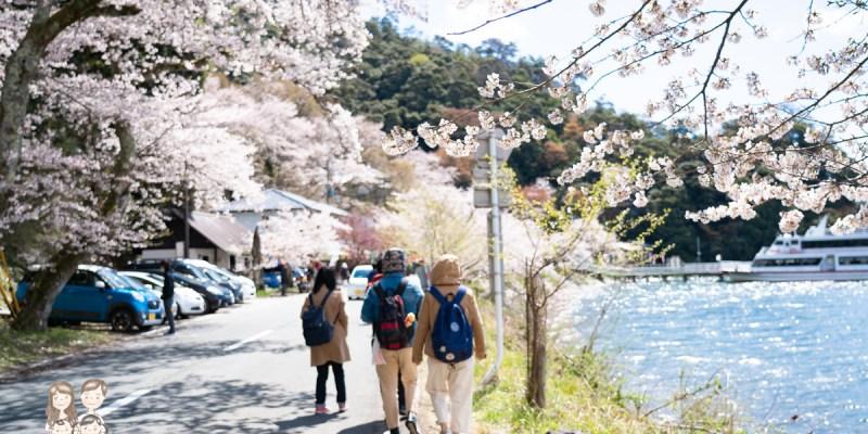 【日本旅遊】來日本看櫻花囉~一整排美麗的櫻花,就像在畫中...琵琶湖畔賞櫻名所-海津大崎!