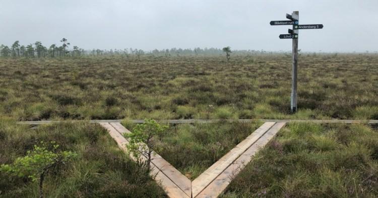 [瑞典第17座國家公園] Store Mosse National Park – 園區介紹