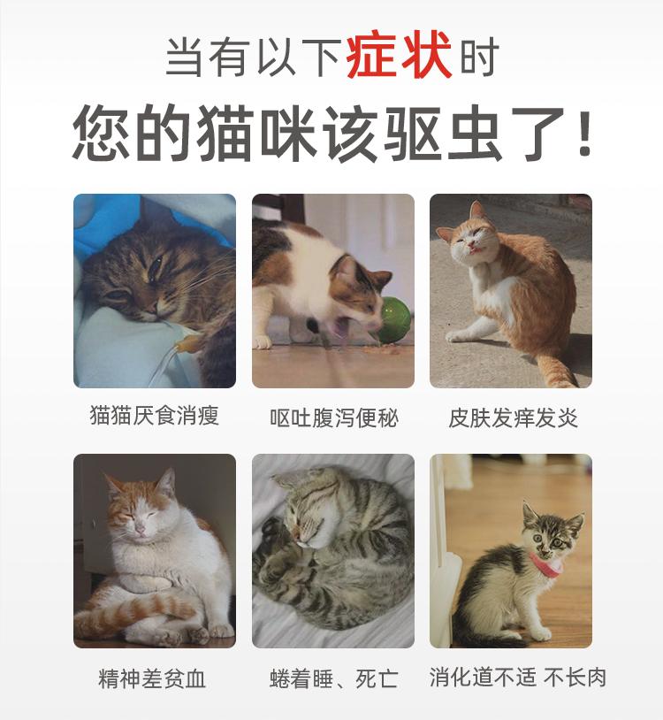 貓咪體內驅蟲藥拜耳貓咪驅蟲藥貓咪體內驅蟲絛蟲鉤蟲線蟲4粒包郵