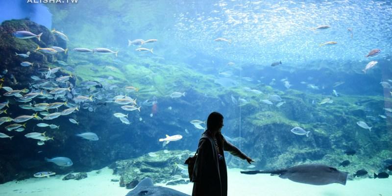 長崎。九十九島 搭乘海盜遊覽船征服百座小島 九十九島水族館 挖珍珠體驗