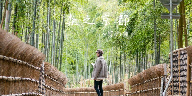 森之京都·向日 竹之徑.竹林公園,嵐山之外的另一處秘境
