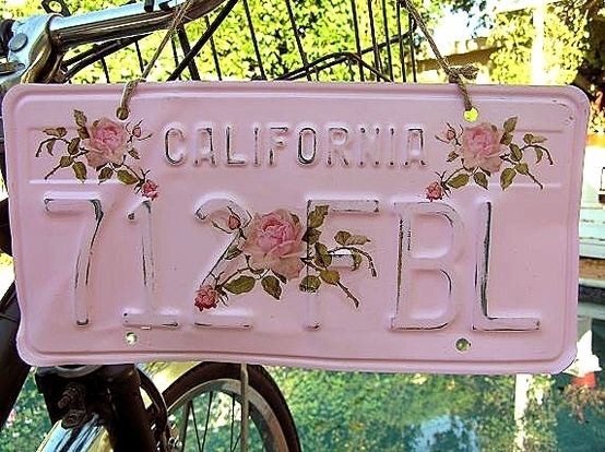 License Plate - 7 Cute Ways to Personalize Your Car and ...