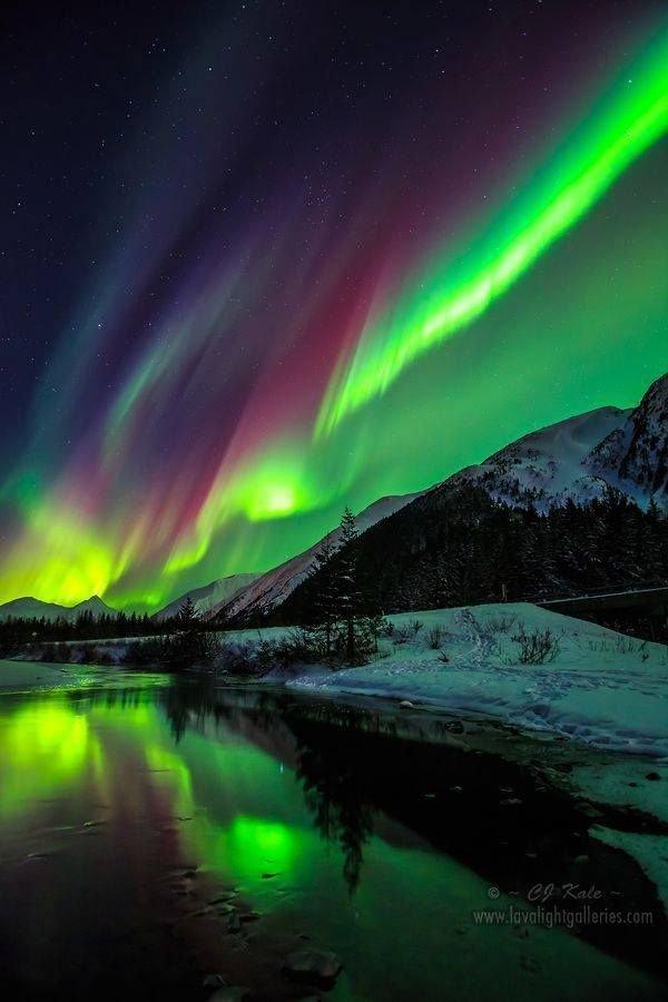 Juneau Northern Lights