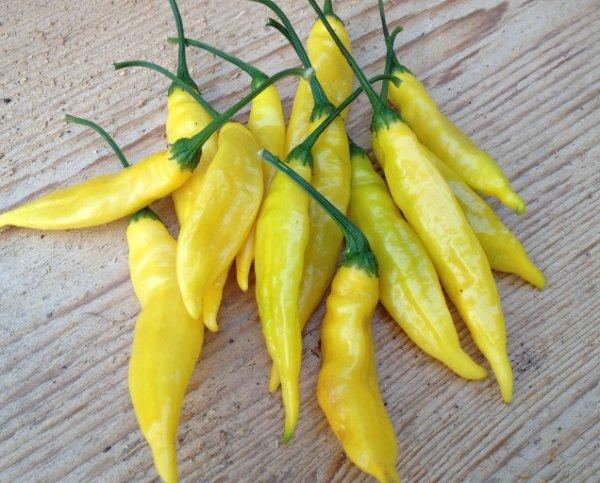 Hot Lemon Peppers