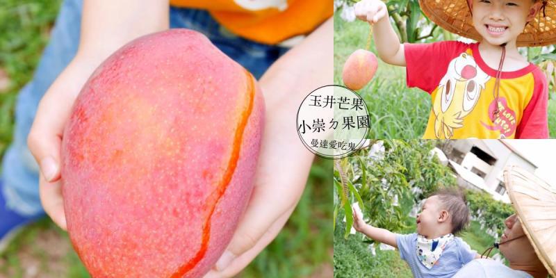 【親子活動】玉井開心採果趣。小崇ㄉ果園。玉井芒果|觀光果園|親子景點|台南景點