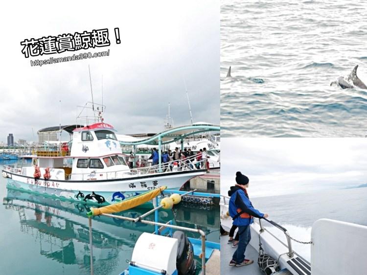 花蓮賞鯨與海洋的親密接觸。出遊規劃行程就愛『奧丁丁體驗』。賞鯨生態之旅|花蓮景點