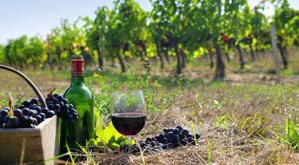 Κρασί