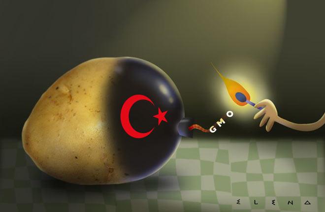 GMO-Τουρκία-Εσ.