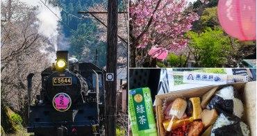 [靜岡旅遊]大井川鐵道復古SL蒸氣火車初體驗~春天限定家山櫻花隧道!