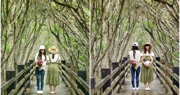 [新竹景點 新豐紅樹林]人像玩拍  漫步綠色水上隧道