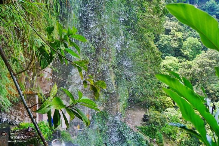 20190530225620 69 - [新店景點 銀河洞越嶺步道 ]全台北最仙氣的步道 來一場與飛瀑共舞的山林之旅