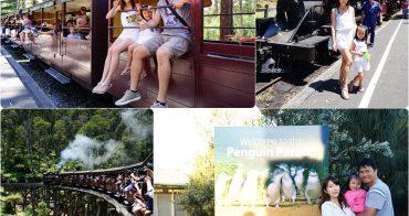 【澳洲自由行】墨爾本必去親子景點♥丹頓農蒸汽小火車+菲利浦島企鵝歸巢