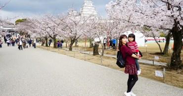 【京阪自由行】姬路城賞櫻 交通、天守閣 ♥ 世界遺產的美麗白城