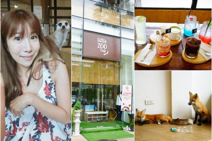 【泰國】曼谷寵物咖啡廳 Little ZOO cafe ♥ 動物園餐廳超療癒阿