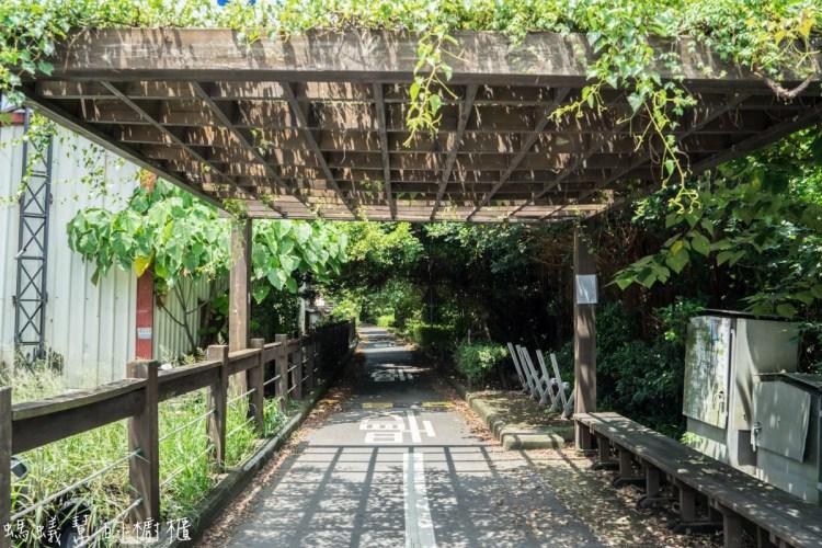 彰化埔心景點 | 如同進入龍貓隧道,埔心環鄉自行車道,欣賞田園綠意風光。