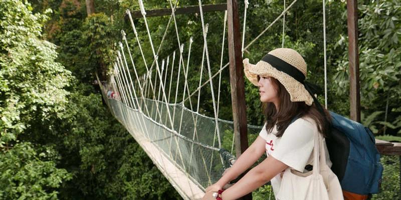 馬來西亞沙巴旅遊推薦 | 神山市集部落、高山奶牛場、神山國家公園溫泉區、神山原始溪流餵鯉魚。
