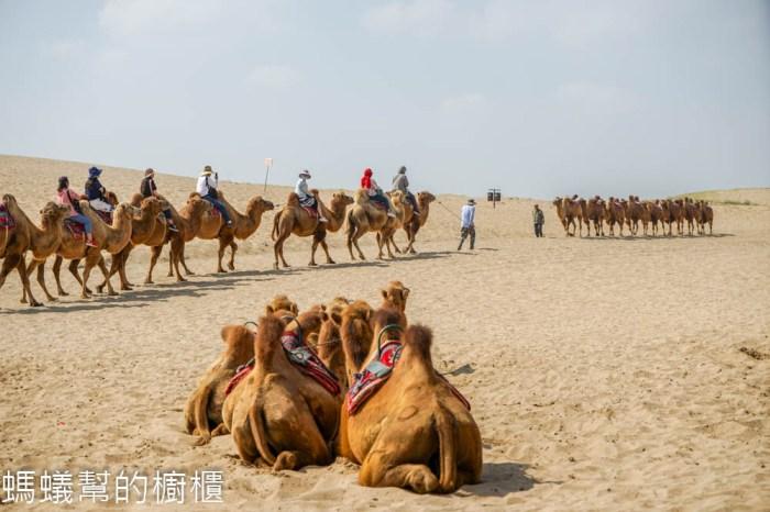 寧夏旅遊沙湖 | 絲綢之路塞上風光,沙漠、湖景、蘆葦、飛鳥,寧夏沙湖生態旅遊景區。