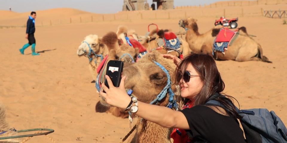 通湖草原   寧夏與內蒙古交界處,第一次騎駱駝體驗,第一次走在沙漠原來這麼感動。