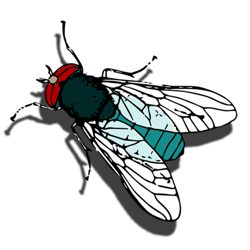 Counting Bugs 1.0.7c icon