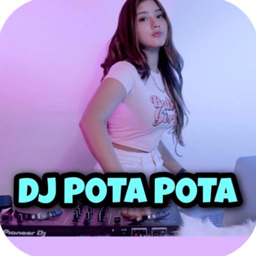 DJ Pota Pota Tiktok Remix Viral Offline 1.0 icon