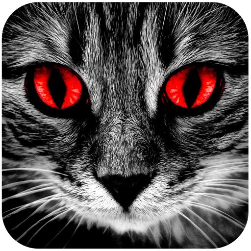 Creepy Horror Stories: Text Scary Chat Stories EN 1.7.4 icon