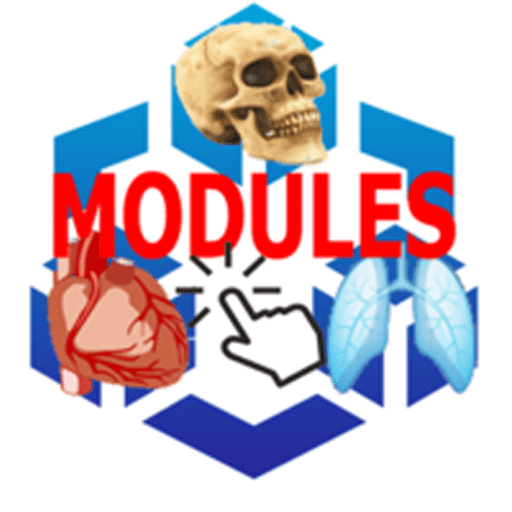 Nursing Modules 1.1 icon