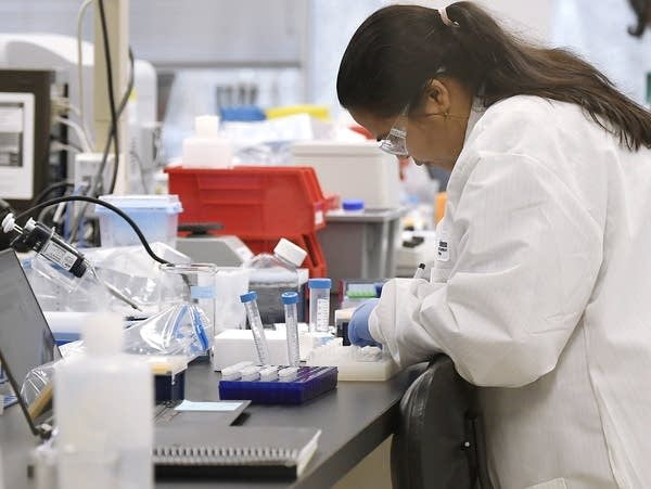 A researcher at Protein Sciences works in a lab