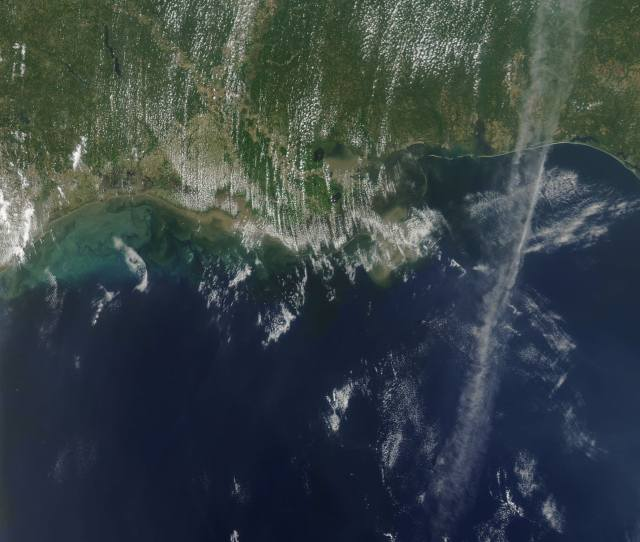 This Nasa Photo Shows The Dead Zone From Space In 2011