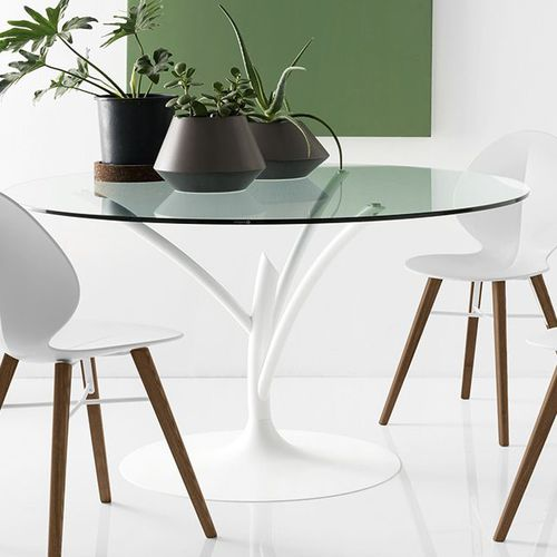 contemporary dining table acacia