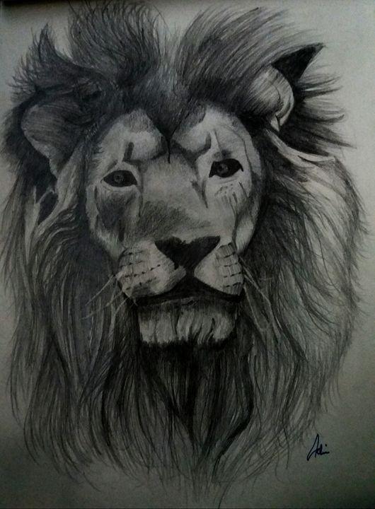 Lion Pencil Sketch Farrad Drawings Illustration Animals Birds Fish Wild Cats African Lion Artpal