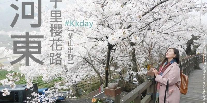 韓國 ▌釜山自由行 : 粉紅櫻花浪漫大道 河東十里櫻花路 晉州賞櫻 #Kkday一日遊