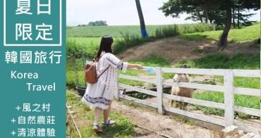 【韓國一日團】夏季限定!風之村 + 自然農莊清涼體驗 搭水陸兩用車 抓魚體驗 親子行程