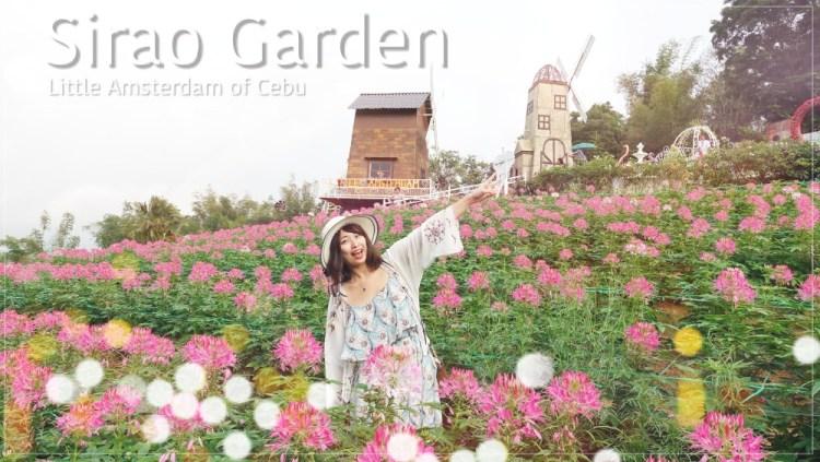 菲律賓 ▌宿霧本島景點:Sirao Garden 天空花園|宿霧阿姆斯特丹 天氣好就很好拍