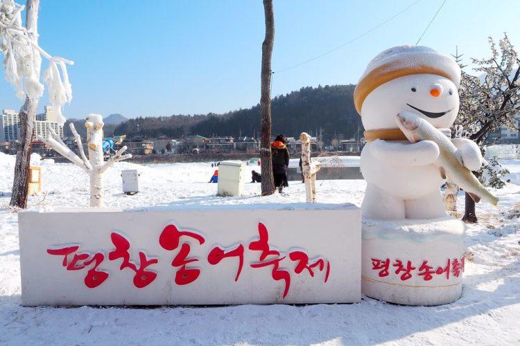 韓國江原道景點 ▌冬天來韓國玩什麼? 平昌鱒魚節 평창송어축제 冰上釣魚&有趣的徒手抓鱒魚《加小菲專欄》