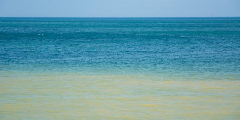  新北景點 水湳洞陰陽海,大自然的調色盤