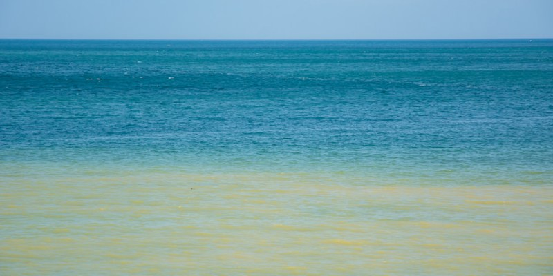 |新北景點|水湳洞陰陽海,大自然的調色盤