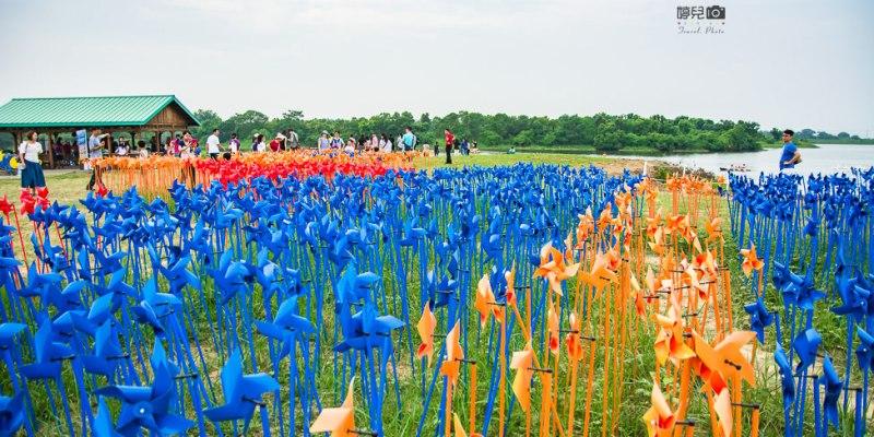 |台南景點|德元埤荷蘭村,7000支彩色小風車迎接風車節到來