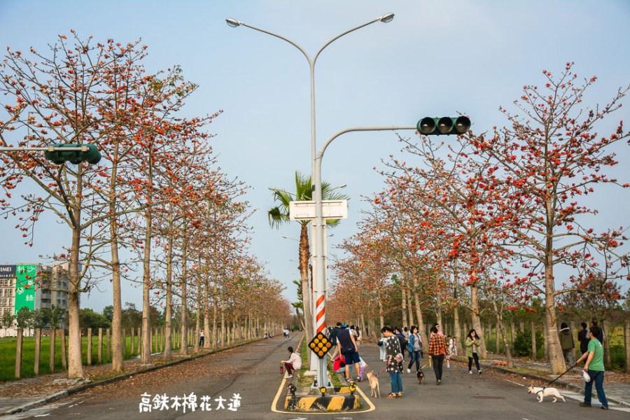  台南景點 歸仁十五路,高鐵木棉花大道