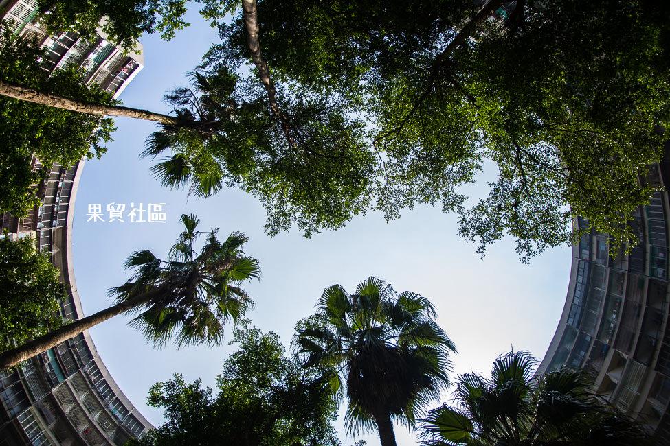 |高雄景點|果貿社區,IG打卡熱門景點,類窩居特色建築具有高雄小香港之稱