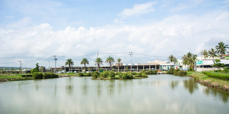 |高雄景點|林園公12海洋濕地公園,全台唯一的水母瀉湖,季節對了就能看見倒立水母